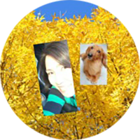 Amy オンライン英会話コーチ・TESOL英語トレーナー